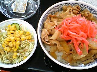 豚丼並+野菜サラダ\440