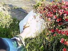 十六沼のアヒル