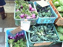 パープル野菜群