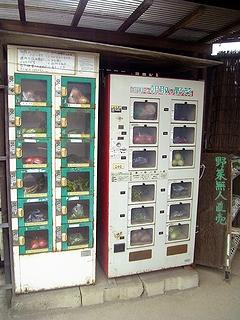 無人野菜販売機