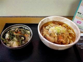 天ぷらうどんと山菜ご飯