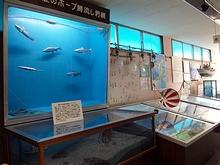 酒田海洋センター