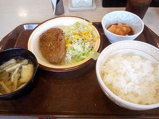 おろしハンバーグ定食